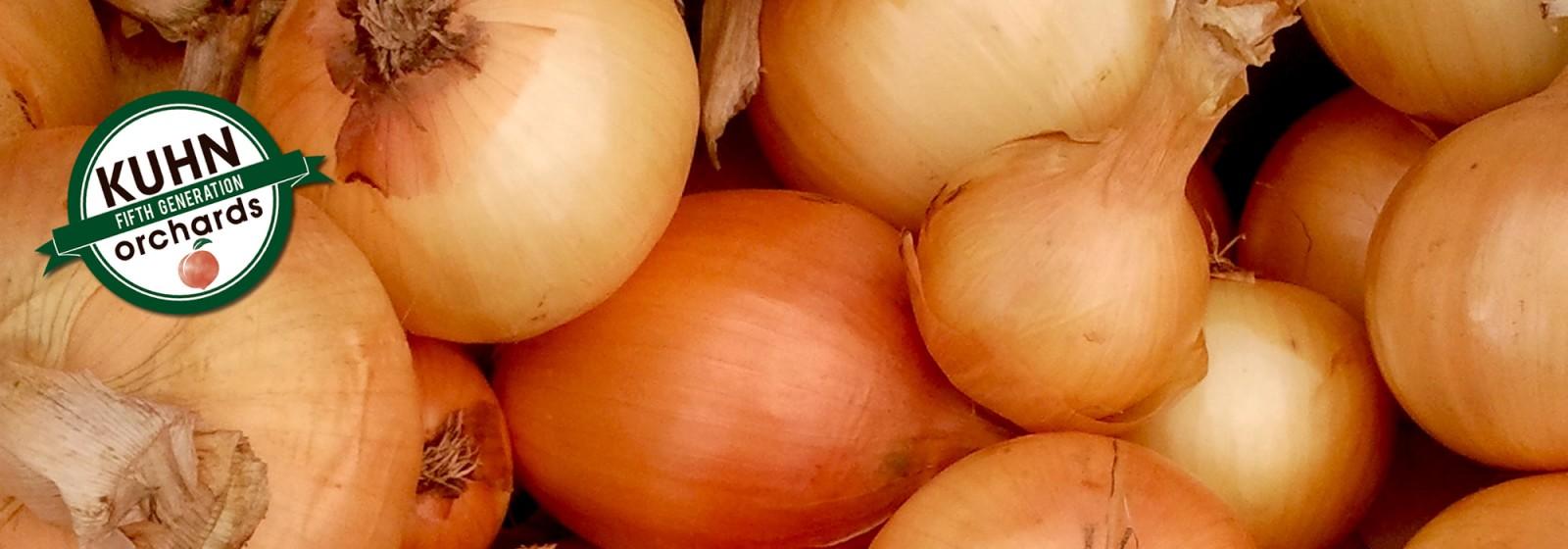 Onions- round-yellowjpg