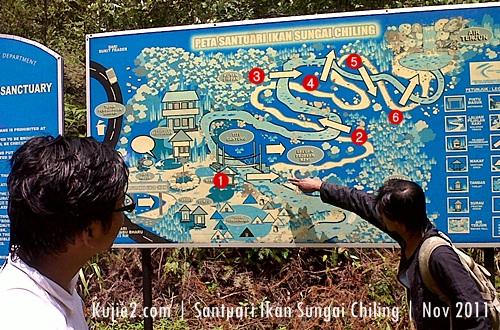santuari ikan kelah sungai chiling