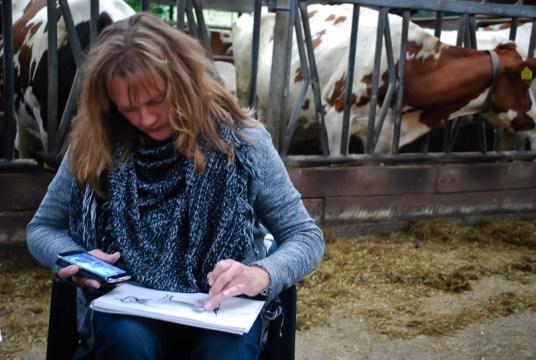 kunststichting-markelo-ksm-herfstworkshop-2015-koeien-schilderenDSC_6505