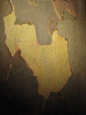 ria-wittenberg-kunststichting-markelo-ksm-verzinhet-nacht-van-de-nacht-2015-ria-wittenberg-nacht-van-de-nacht-kunststichting-markelo-IMG_0991