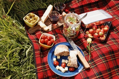 casey_rules_Picnic