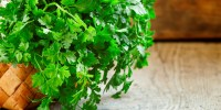 parsley plant