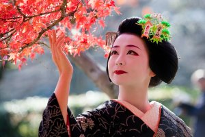 Maiko (Apprentice Geisha) Photo credit: Onihide at Flickr