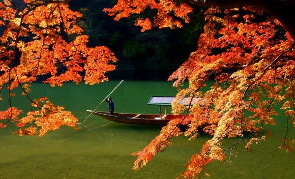 autumn_nature_arashiyama_kyoto