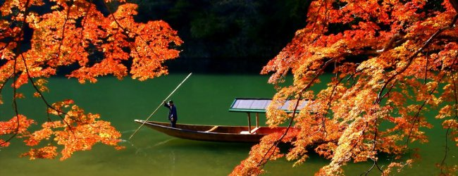 Autumn Leaves in Kyoto | Visit Kansai Region