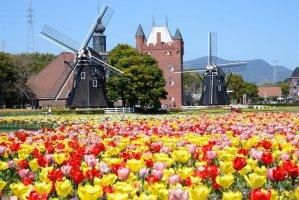huis_ten_bosch_windmills_and_tulips_nagasaki