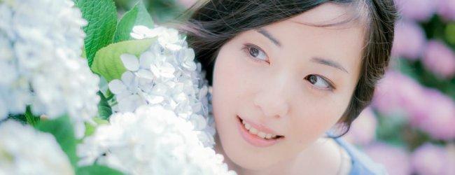 Hydrangea (Ajisai) Season in Japan