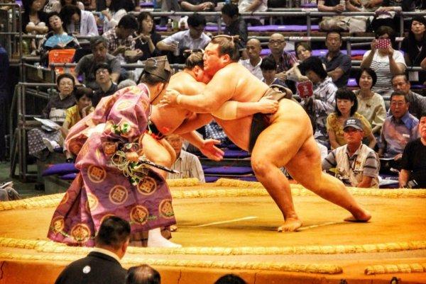 sumo_nagoya_basho_japan