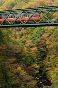 hayakawa_bridge_in_autumn