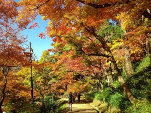 korankei_valley_fall_foliage