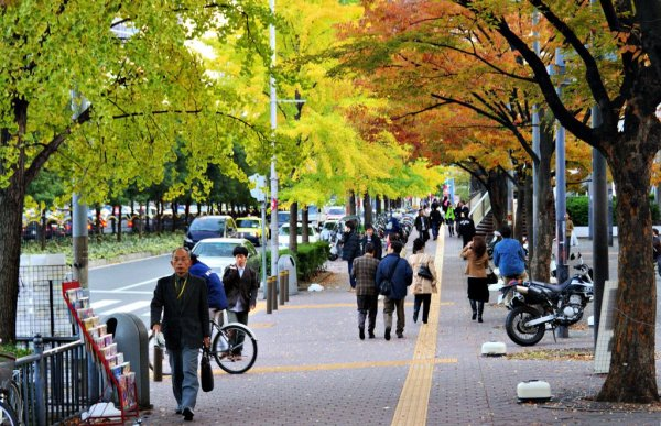 midosuji_street_umeda_osaka