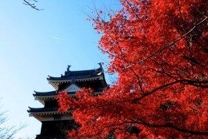 nishio_castle_aichi_japan