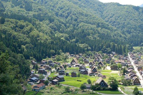 summer_landscape_shirakawago
