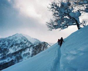 backcountry_skiing_hokkaido