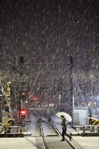 snowfall_in_tokyo