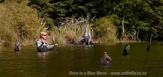 peche-a-la-mouche-nouvelle-zelande-onceinabluemoon