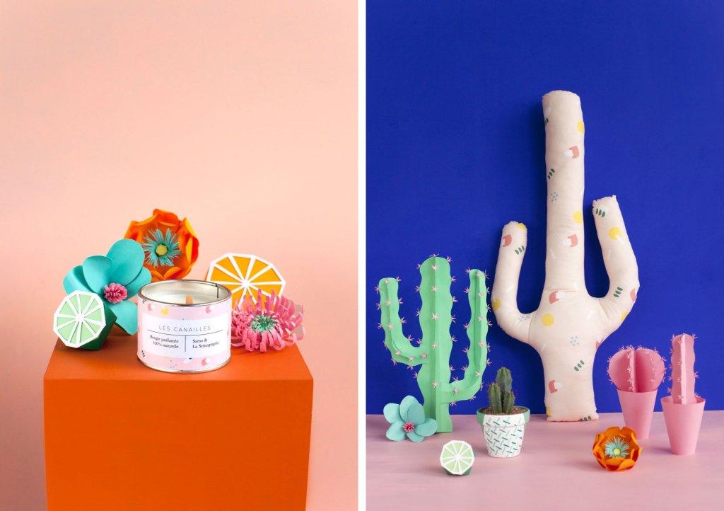 cactus-merci-raymond-x-la-seinographe
