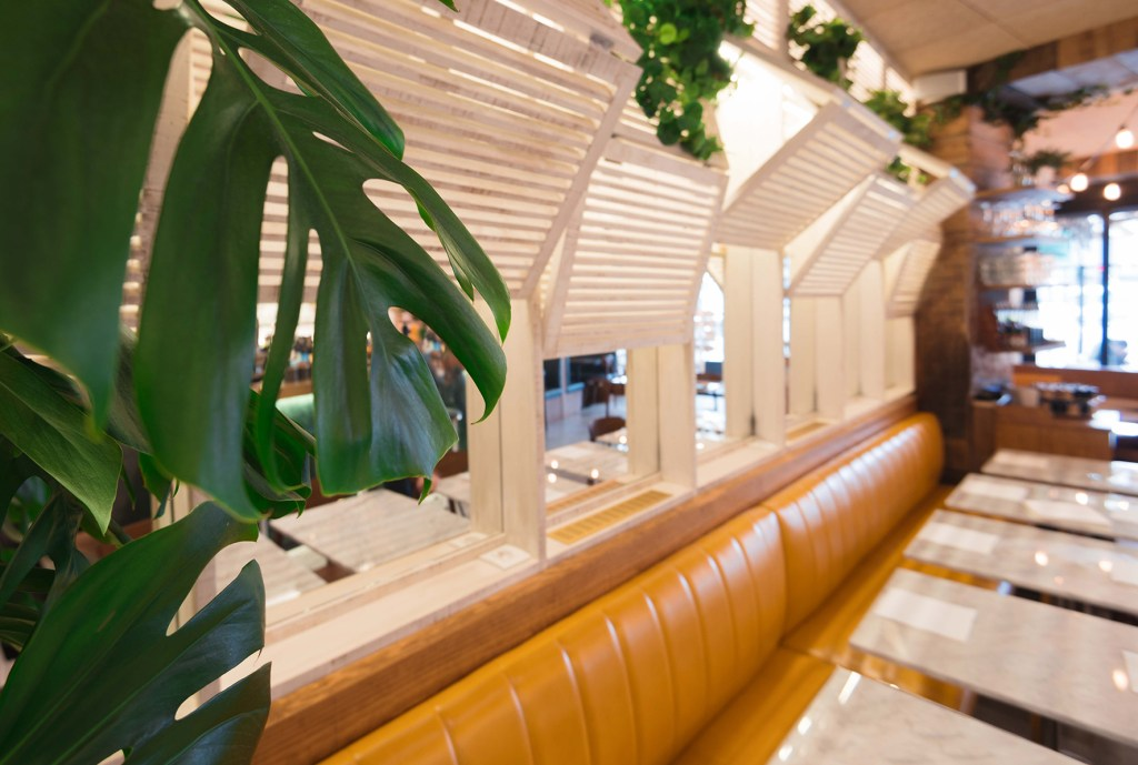 restaurant-vegetal-les-fauves-montparnasse-paris-_6638