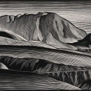 Les gravures de Paul Landacre