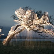 Des arbres incandescents d'étincelles