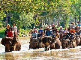 """Chiang Mai, la """"Rosa del Norte"""""""