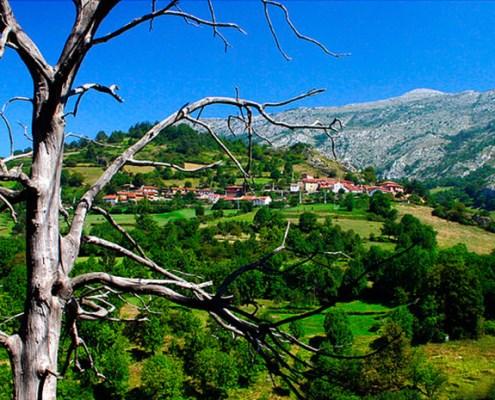 Entorno casa rural La Carrozal Asturias Teverga