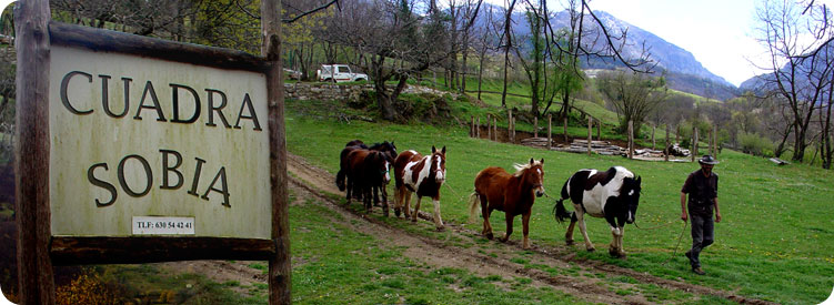 Actividades ecuestres, montar a caballo en Asturias