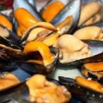 Beneficios del mejillón y dos recetas