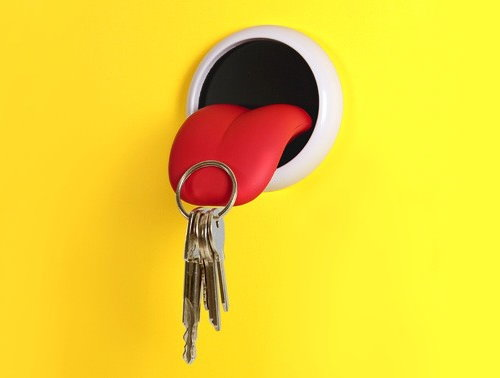 Tongue Key Holder (2)