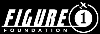 Figure 1 Foundation 2017 Scholarships