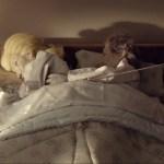 ITSALRIGHT_puppetlit