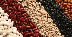 Proteine, quelle vegetali riducono il rischio di morte precoce
