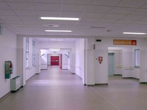 Sifilide, gonorrea, clamidia: casi in aumento in Italia