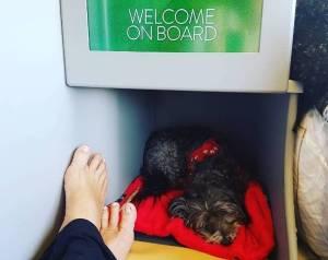 Romina Power in aereo: la FOTO che fa discutere i fan