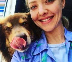 Amanda Seyfried incinta di Thomas Sadoski!