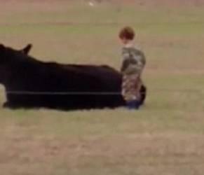 Bimbo sale su mucca che si riposa: finisce malissimo VIDEO23