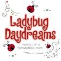 Ladybug Daydreams