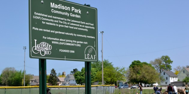 Madison Park Community Garden Takes Root Early