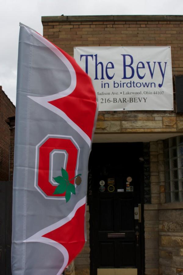 Bevy in Birdtown Go Bucks