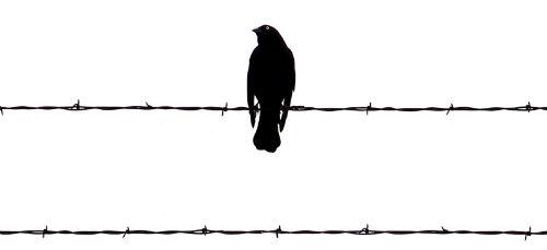 Una prigione per la tua mente e per il tuo essere