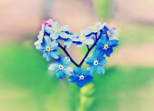 Puoi guarire il tuo cuore - Louise Hay