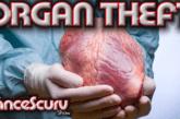Black Children Murdered In Hospitals For Secret Organ Theft Ring? One Man's Story!