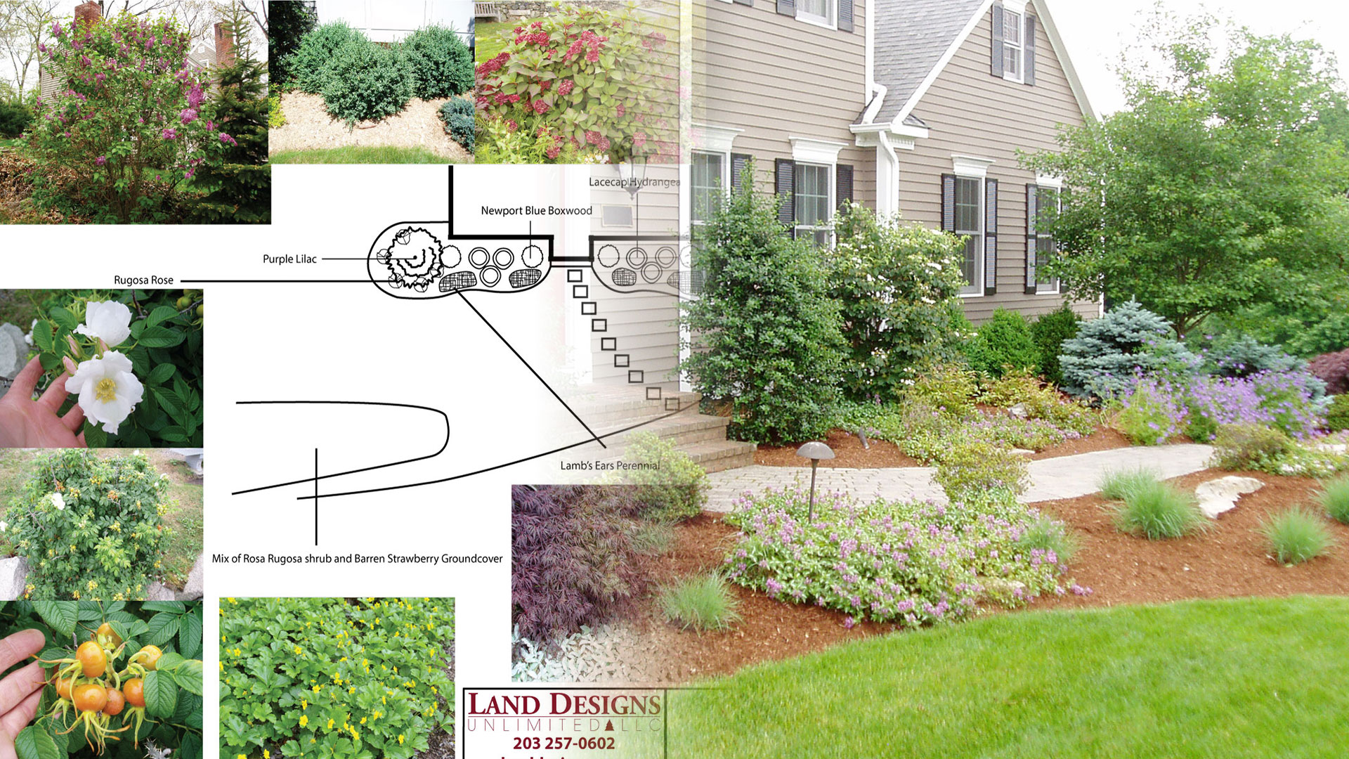How i got my groove the stages of a landscape design for Landscape design career