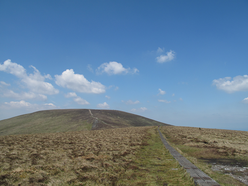 In den irischen Bergen von Wicklow
