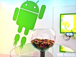 Android-Jelly-Bean-Bowl-550x411