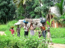 Communities, livelihoods and ecosystems in a changing climate