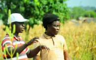Farmer and extension agent in Ghana
