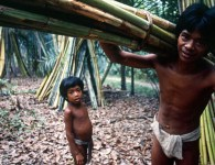 Jungle-People-and-NTFP