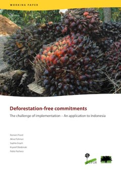 Deforestation-free commitments- The challenge of implementation – An application to Indonesia