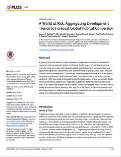 Global Development Risk assessment